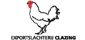 Logo Calzing